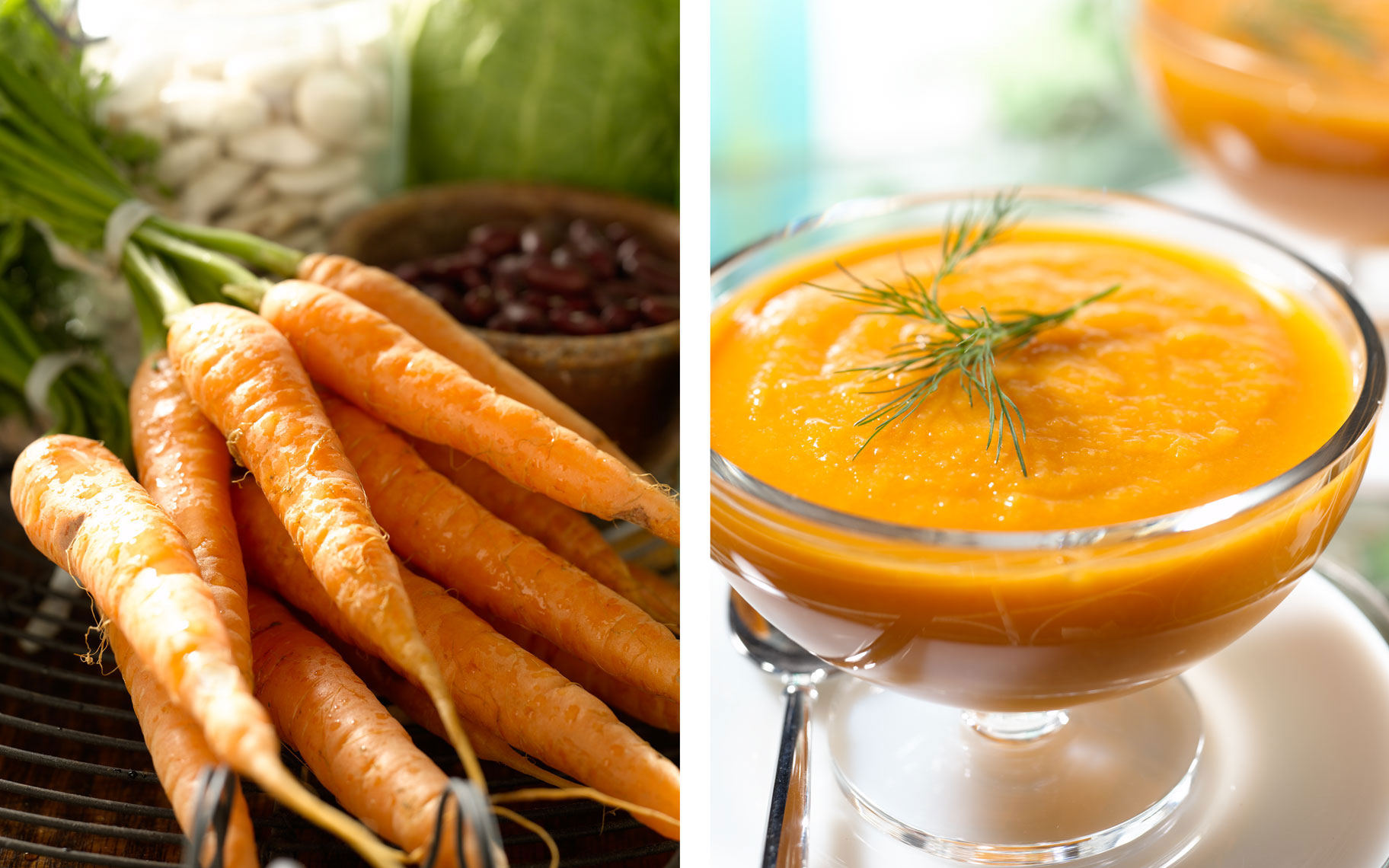 carrots-pureed-soup